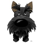 Scottish Terrier - Big Nose and Butt