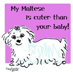Maltese is Cuter
