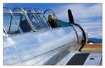 Vintage Silver Fighter Plane Large Poster