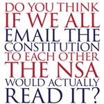 Email the Constitution