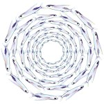 Flying Fish Ring Pattern
