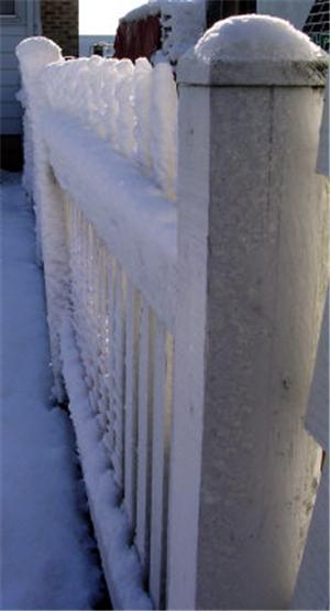 Winter Fencepost