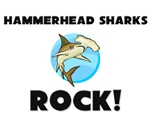 Hammerhead Sharks Rock!