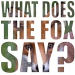 fox say colored