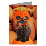 Cat Cards for Holidays/Occasions