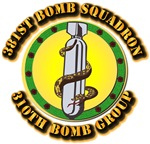 AAC - 381st Bomb Squadron - 310th Bomb Group
