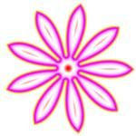 Groovy Pink Daisy Type Flower