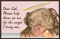 True Angel