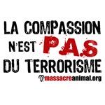 LA COMPASSION N'EST PAS DU TERRORISME
