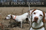 Proud Pointer