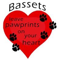 Bassets leave pawprints...