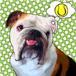 Comical Bulldog