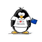 Nevada Penguin