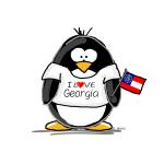 Georgia Penguin