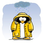 Rainy Day Penguin