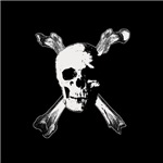 Gothic horror pirate jolly roger