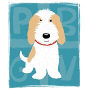 Tan & White PBGV Cartoon