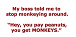Pay Peanuts? Get Monkeys