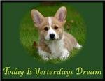 Yesterdays Dream
