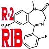R-2 RIB
