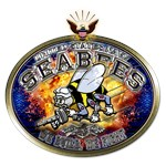 USN Navy Seabees Eagle