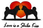 Love is a Shiba Kiss