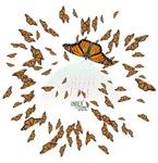 Under the Dome Monarchs