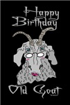 Old Goat Birthday 4 Her