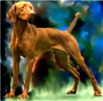 Vizsla with abstract background