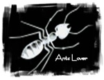 Ants lover