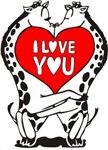 Giraffes In Love!