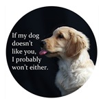 My Dog Doesn't Like You