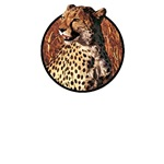 Cheetah T-Shirts and Gifts