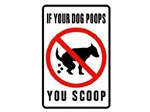 dog poop scoop