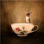 Tea Time With a Hummingbird 2