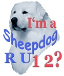 I'M A sHEEPDOG RU 12?