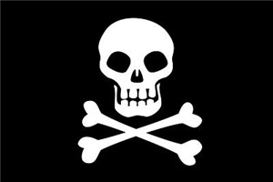 Pirate Flag Skull And Crossbones