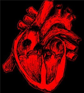 Human Heart Red