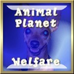 Animal & Planet Welfare