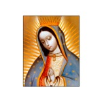 Virgen de Guadalupe - Patroness of the Americas