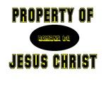 Property (Yellow)