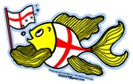 English Flag Fish