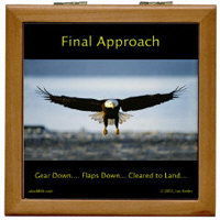 Final Approach - Landing Bald Eagle Collection