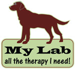 Chocolate Lab Therapy