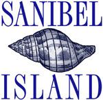 Sanibel Island Shell