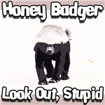 Honey Badger Look Out Stupid Brown