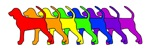 Rainbow BT Coonhound