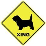 PBGV Crossing