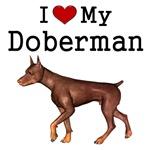 I love Dobermans