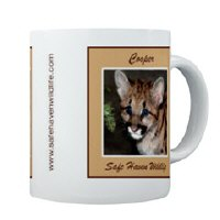 Wildlife Mugs & Coasters